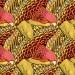 Tupi Novo Mundo: the New EP by Afrobeat Band Iconili